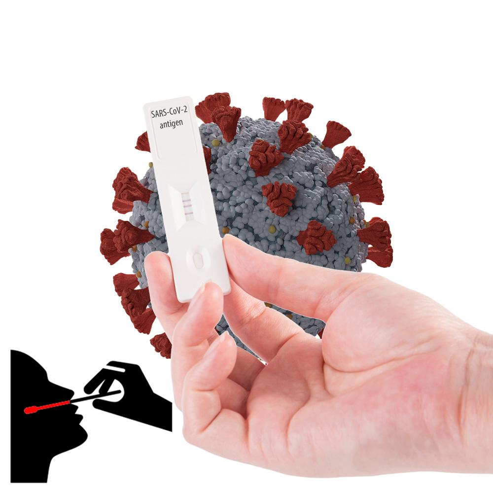 Szybkie testy antygenowe